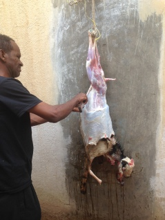 A section of this wall has been chipped off to its surface in order to skin and cut the meat off a goat that's just been slaughtered in the home of a family in Asmara, Eritrea on July 20, 2014. The goat's feet are tied up and it dangles while the man chops it into sizable pieces for consumption.